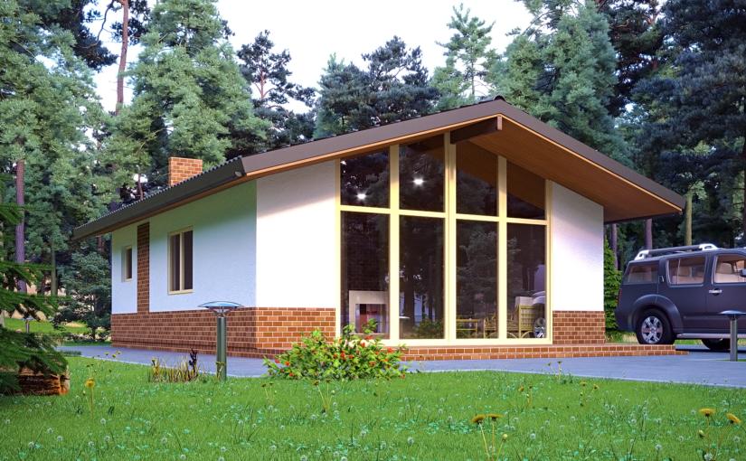 Проект «Дачный дом 3»